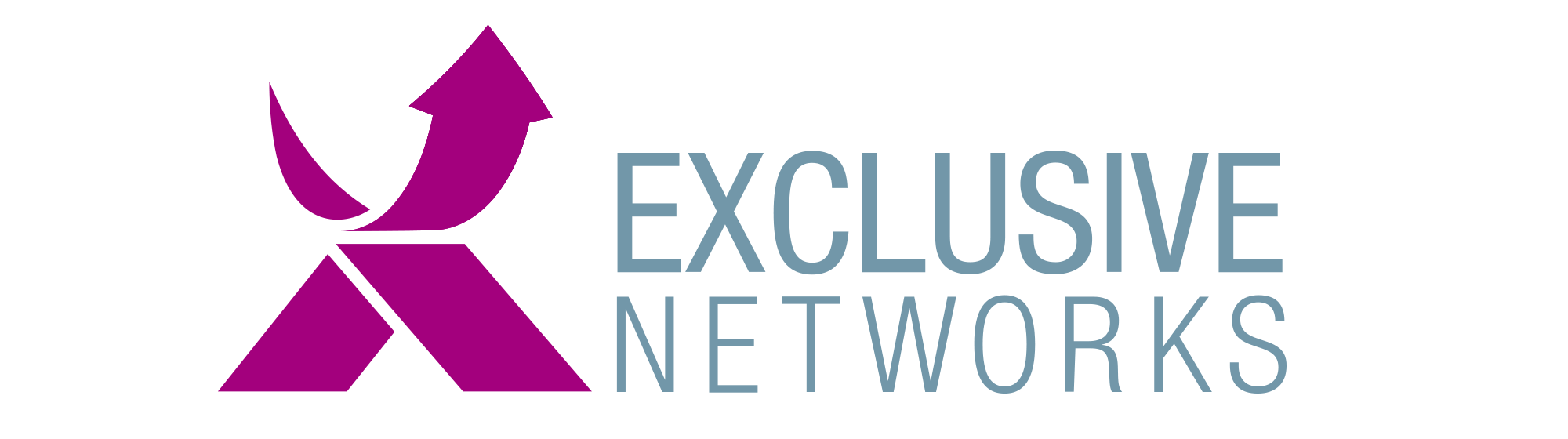 exclusive-networks-logo